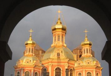 Sainte-Croix cosaque Cathédrale sur Ligovsky. Histoire et description