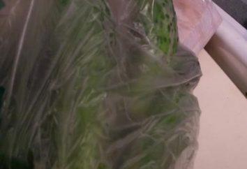 concombres marinés dans un paquet en une heure – est-elle réelle? Recettes Fast Food