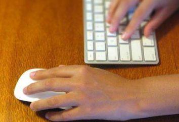 Dobra mysz bezprzewodowa: Jak wybrać, podłączyć i skonfigurować