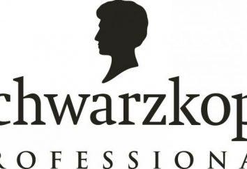 Hairspray Schwarzkopf Professional: uma visão geral