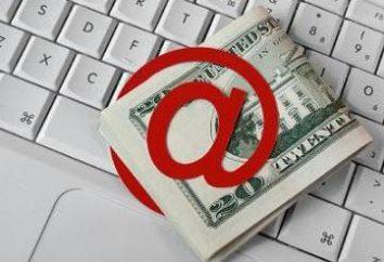 Wie man Geld im Internet auf der Website zu machen? Möglichkeiten, im Internet zu verdienen