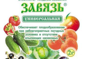 """""""Jajnik uniwersalne"""" – stymulator owoców: skład, instrukcje, recenzje"""