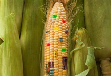 Notre santé: Une liste des produits contenant des OGM
