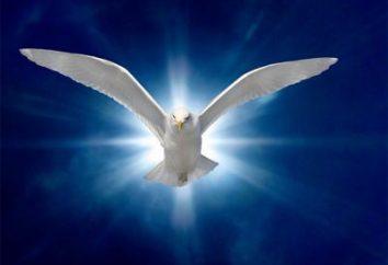 Il mondo spirituale della personalità: concetto e componenti