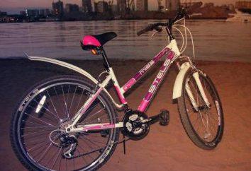 """""""La señorita de Stealth 5000"""" – una bicicleta de estilo, haciendo hincapié en la identidad femenina"""