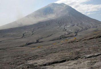 vulcão da Tanzânia poderia destruir os vestígios de hominídeo antigo