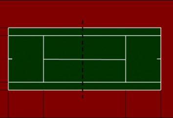 Les dimensions standard d'un court de tennis et des vues de ses revêtements