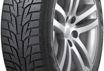 Neumáticos Hankook W419: revisiones