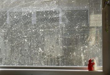 Como lavar uma janela na varanda fora? Ferramentas e equipamentos para lavar janelas