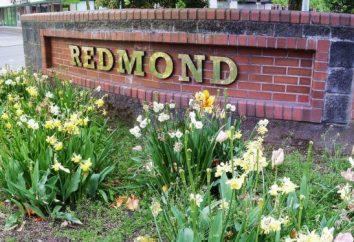 "Blender ""Redmond"": recensioni. Caratteristiche, prezzi, foto"