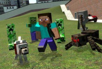 Como instalar uma pele em Minecraft rapidamente e eficientemente