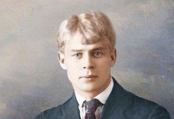¿Dónde y cuándo nació Esenin Sergey? Biografía, la creatividad y la forma de vida