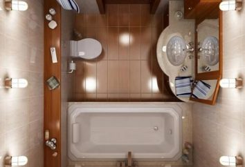 Comment équiper l'intérieur de petites salles de bains?