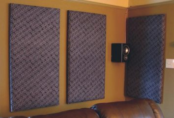 Panneau acoustique: avantages, caractéristiques et assemblage d'application