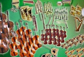 La composition d'un orchestre symphonique. La composition de l'orchestre symphonique dans les groupes
