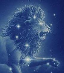 Caratteristiche di leone maschio da A a Z