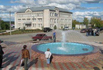 Das Dorf Krasnye Baki (Gebiet Nischni Nowgorod): Geschichte und Erfolge