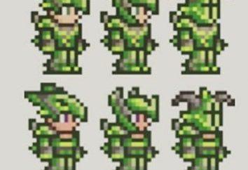 """risorse rare gioco """"terrario"""": la clorofilla"""