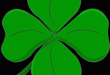 Symbole des viel Glück: Was ist der Wert von vierblättrige Kleeblatt