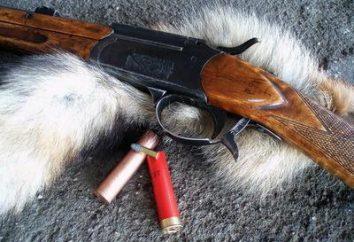 """""""Squirrel"""" (pistolet): description, caractéristiques, calibre"""