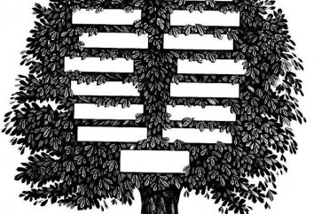 Genealogie – ist der Weg zur Erkenntnis der Gattung