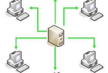 L'architecture client-serveur: caractéristiques d'interaction