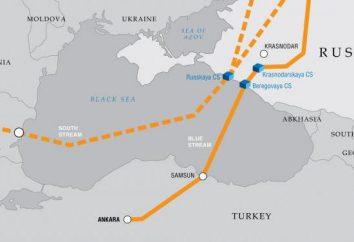 """""""Corriente de Turquía"""" está muerto? Historia y presente"""