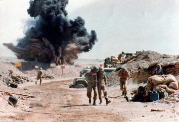 Guerre Iran-Irak: les causes, l'histoire, la perte et les conséquences
