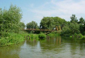 Największym dopływem rzeki. Seversky Doniec – Oskol (rzeka)