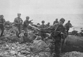 Bitwa na Półwyspie Kercz: plan działań i etapów