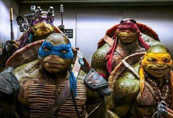 """Retorno de super-heróis! a curiosidade do espectador principal – como Removido """"Ninja Turtles""""?"""