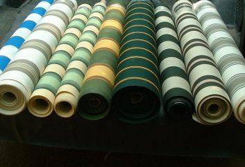 Tenda tessuto: Descrizione e applicazione
