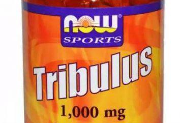 """Il farmaco """"Tribulus"""": come fare la composizione, caratteristiche e recensioni"""