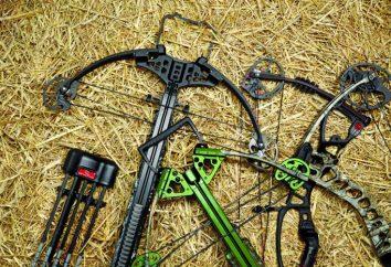 Arbalètes pour la chasse comment choisir? La chasse à l'arbalète et ses avantages