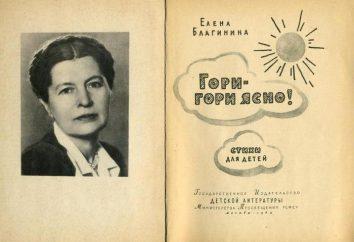 Biografia Elena Blaginin. Strona po stronie w