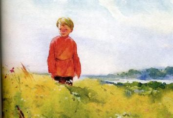 """""""Lo Steppe"""" Cechov: un riassunto della storia"""