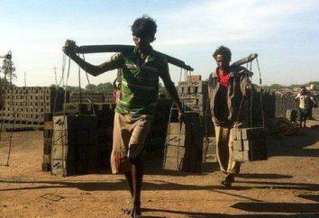 Il lavoro forzato – questo è … Il concetto di lavoro forzato