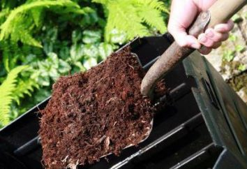 ¿Qué es el compost? Los fertilizantes orgánicos, jardinería