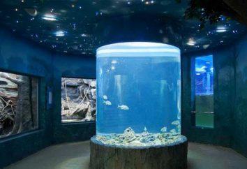 Moskau, Aquarium of the Pacific: der Preis, Adresse, Foto, Bewertungen