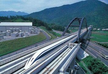 Japanischer High-Speed-Zug: Beschreibung, Ansichten und Bewertungen