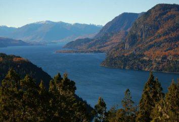datos interesantes sobre América del Sur. Naturaleza América del Sur