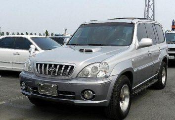 Hyundai Terracan: Spezifikationen, Tuning, Fotos und Bewertungen von Autobesitzer