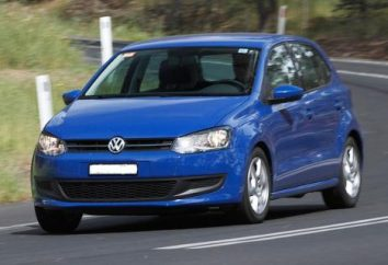 Clearance « Volkswagen Polo », la garde au sol et d'autres caractéristiques optimales
