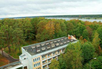 """Wellness Pension """"Upper Volga"""": profil médical, l'emplacement, les prix et les photos"""