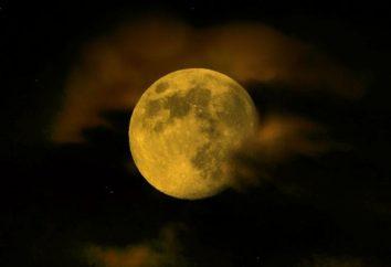 segreti sorprendenti Luna il singolo satellite della Terra