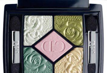 Pourquoi ombres « Dior » si populaire? Qu'est-ce que la palette sera dans la tendance?