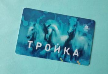 Comment remplir la carte « Troïka » sur Internet