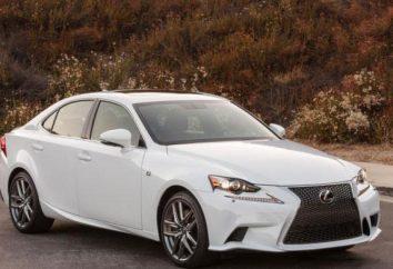 """Lexus"": zakres i opis"