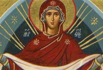 Chiesa di intercessione della Vergine Santa in Izmailovo, Ash, è gratificante Medvedkovo