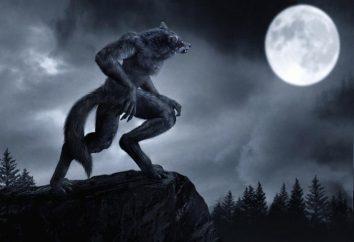 Pessoas-lobos – quem são eles? O homem se transformou em um lobo
